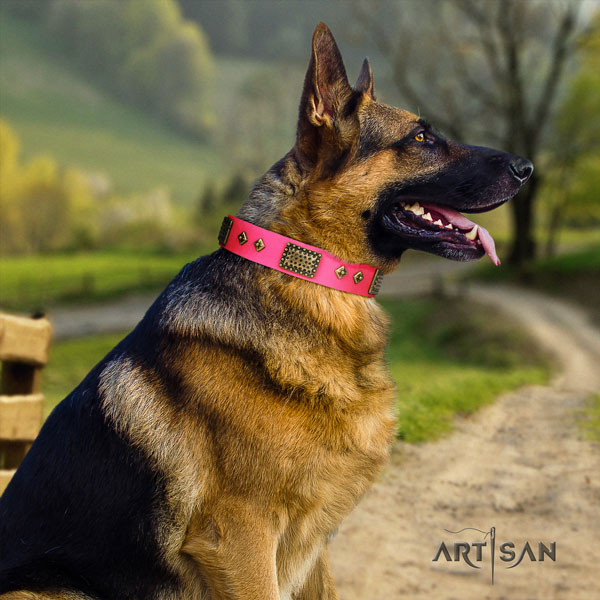 German Shepherd handmade collar with amazing studs for your four-legged friend
