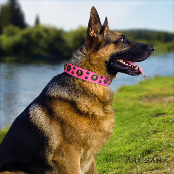 German Shepherd top quality collar with significant embellishments for your doggie