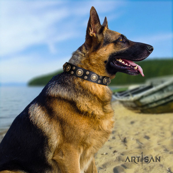 German-Shepherd adjustable collar with impressive studs for your four-legged friend