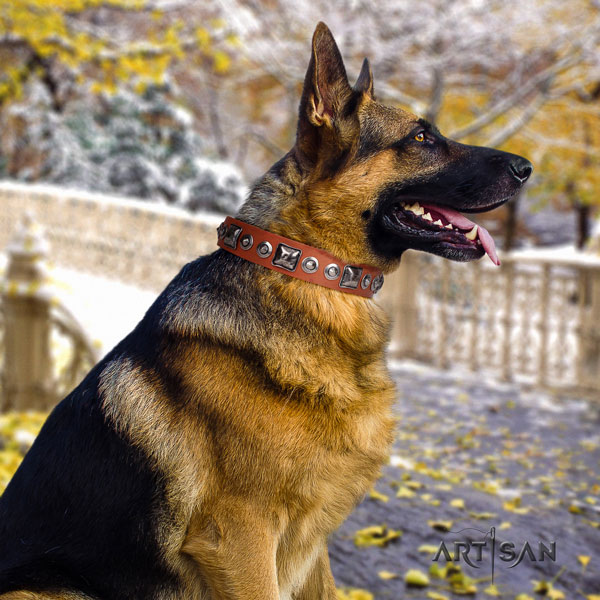 German Shepherd best quality collar with designer decorations for your dog