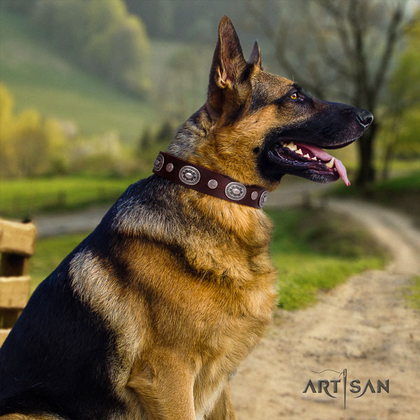 German-Shepherd handmade collar with inimitable decorations for your four-legged friend