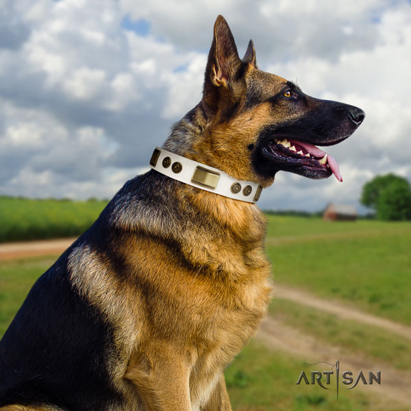 German Shepherd fine quality collar with top notch decorations for your doggie
