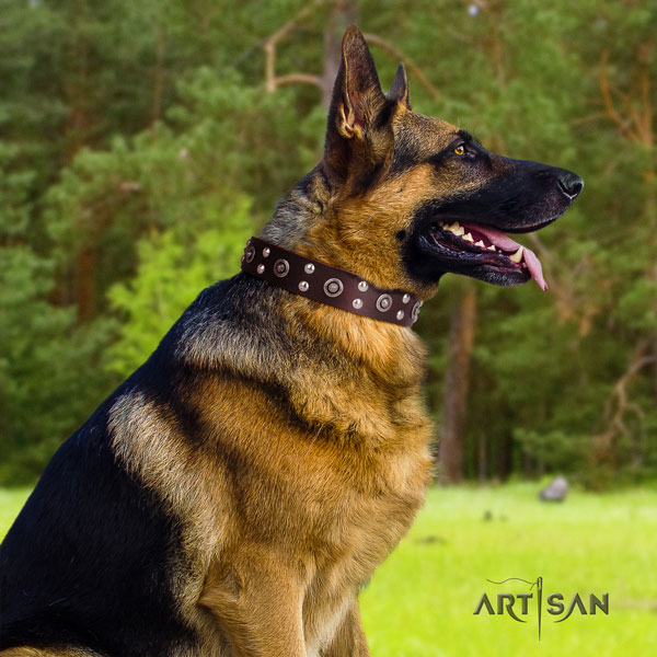German-Shepherd top quality collar with impressive studs for your doggie