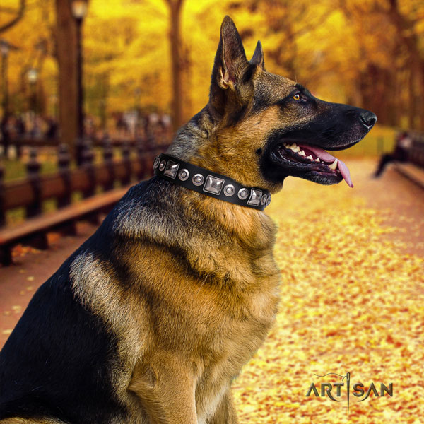 German-Shepherd top quality collar with extraordinary decorations for your canine