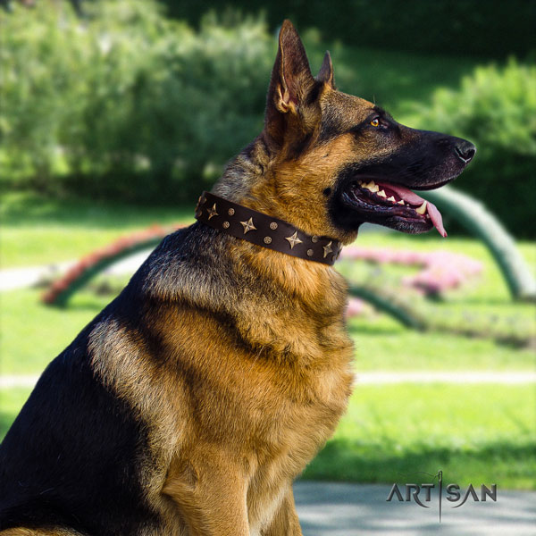 German Shepherd fine quality collar with awesome decorations for your four-legged friend