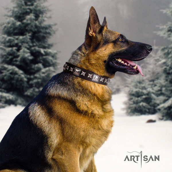 German Shepherd perfect fit collar with extraordinary decorations for your doggie