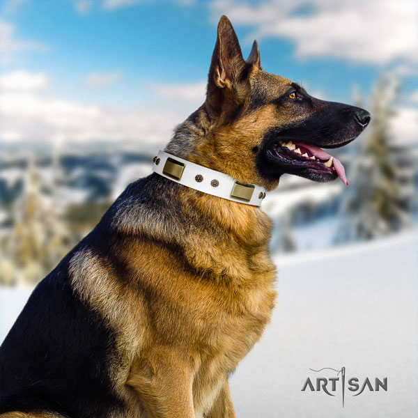 German Shepherd handcrafted collar with fashionable adornments for your canine