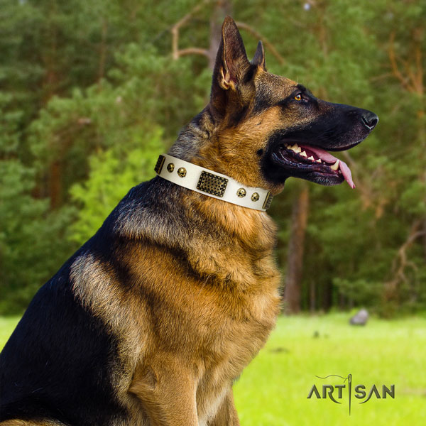 German Shepherd easy wearing collar with significant studs for your four-legged friend