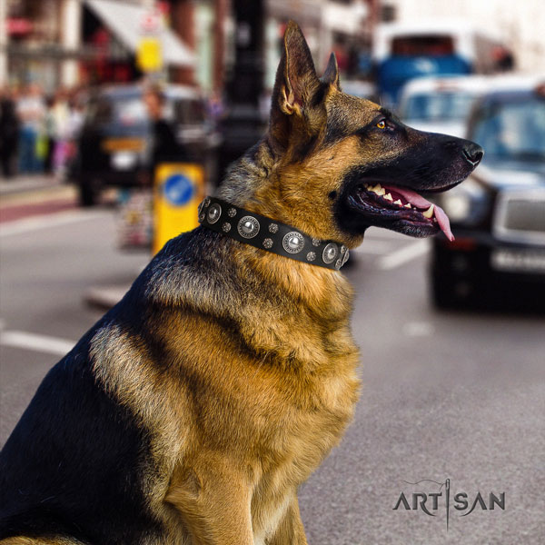 German-Shepherd fine quality collar with stylish design adornments for your four-legged friend