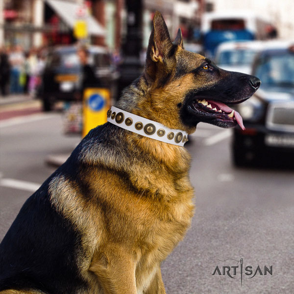 German-Shepherd best quality collar with stylish studs for your four-legged friend