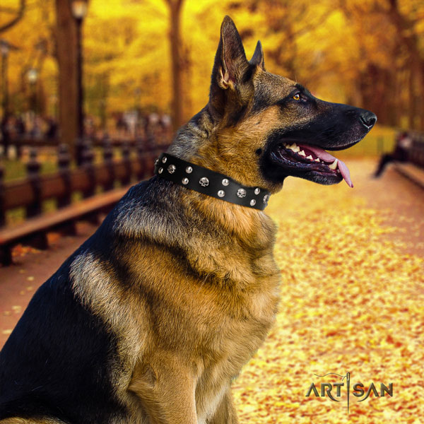 German Shepherd comfortable collar with remarkable decorations for your four-legged friend