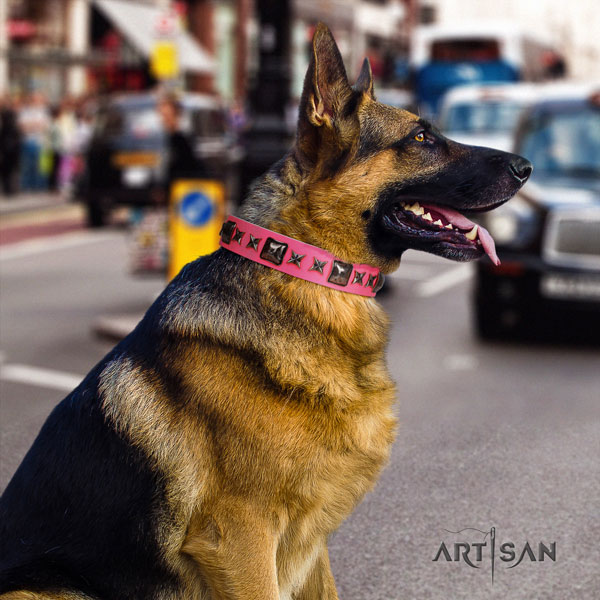 German Shepherd top quality collar with stunning decorations for your dog