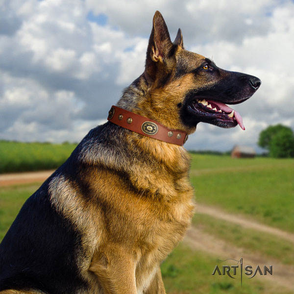 German Shepherd handmade collar with unusual embellishments for your canine