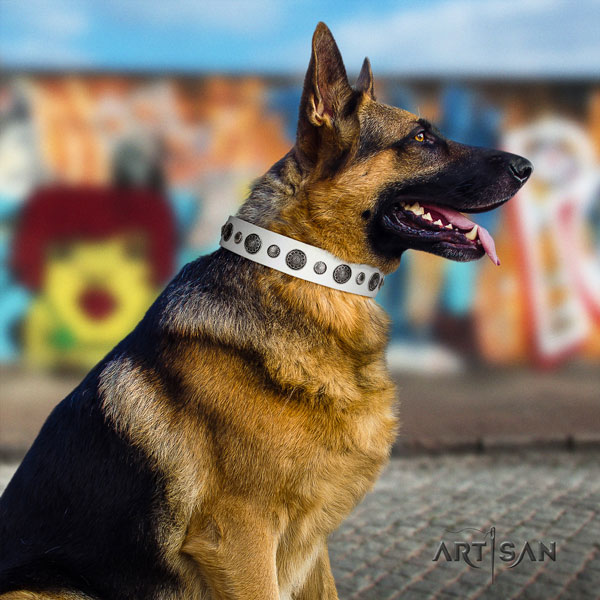 German-Shepherd perfect fit collar with significant embellishments for your canine