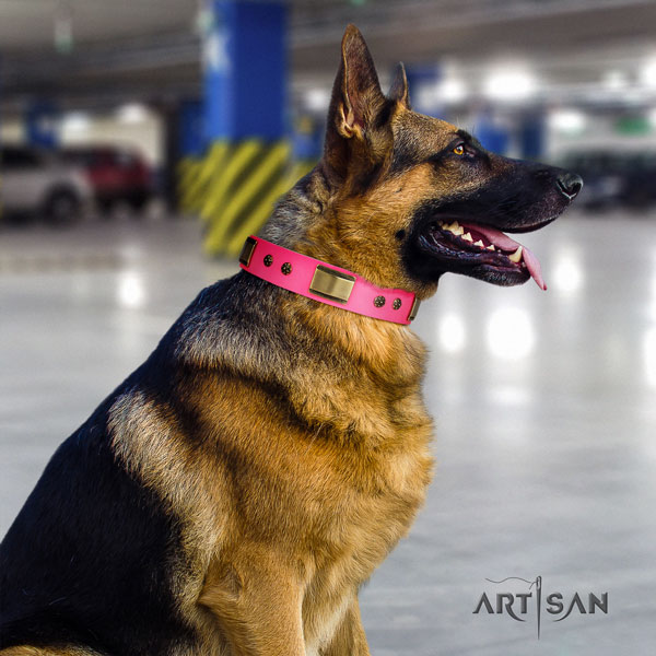 German Shepherd handcrafted collar with stylish embellishments for your dog