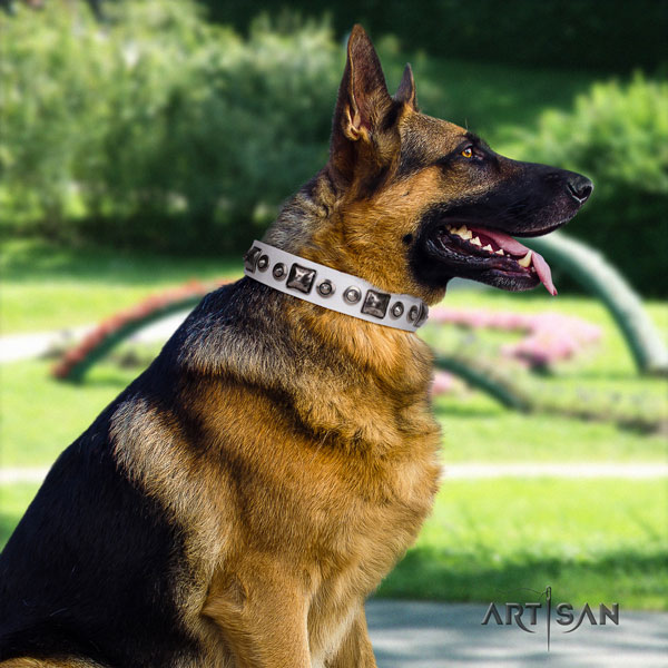 German Shepherd best quality collar with exceptional decorations for your pet
