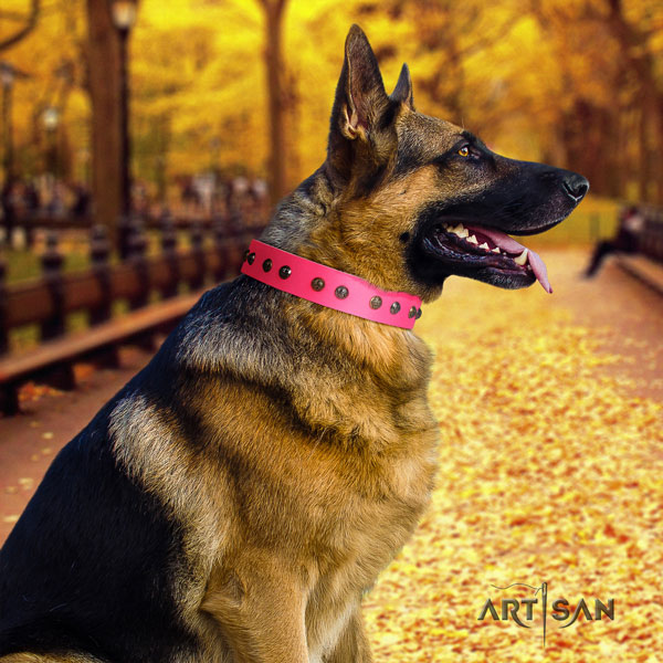 German-Shepherd handmade collar with unusual adornments for your pet