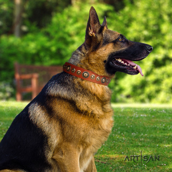 German Shepherd easy to adjust collar with unusual studs for your pet