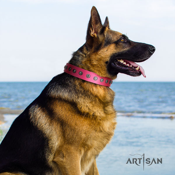 German Shepherd unusual full grain genuine leather collar with embellishments for your doggie