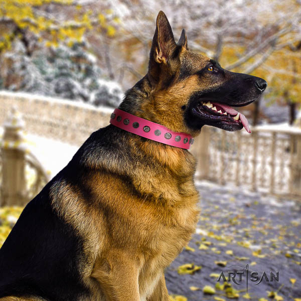 German-Shepherd amazing leather collar with studs for your pet
