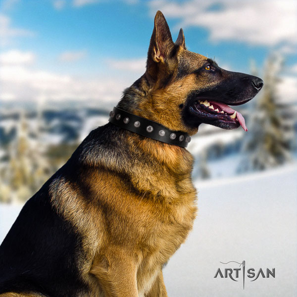German Shepherd best quality genuine leather collar with studs for your doggie