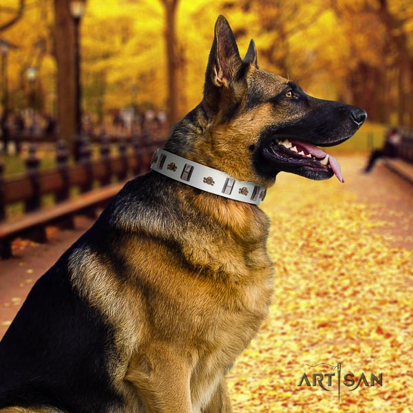 German-Shepherd perfect fit leather collar with embellishments for your doggie