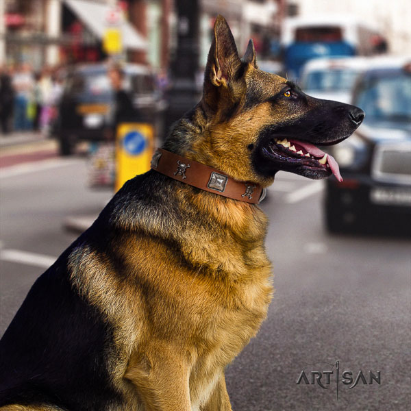 German Shepherd awesome full grain genuine leather collar with embellishments for your pet