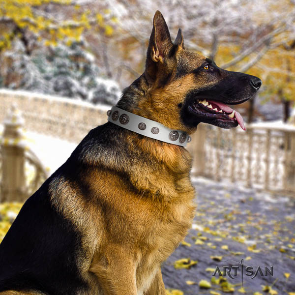 German-Shepherd top notch natural genuine leather collar with embellishments for your pet