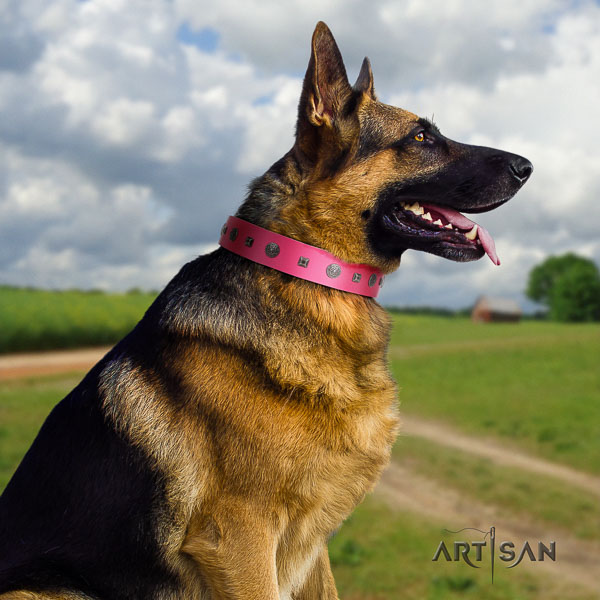 German-Shepherd trendy full grain genuine leather collar with decorations for your canine