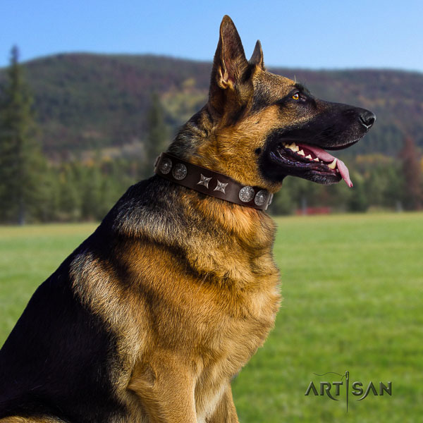 German Shepherd inimitable full grain leather collar with embellishments for your dog