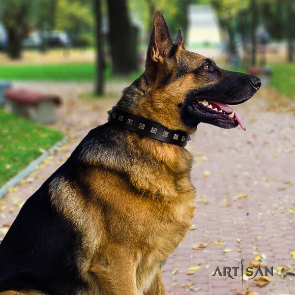 German-Shepherd easy wearing leather collar with embellishments for your doggie