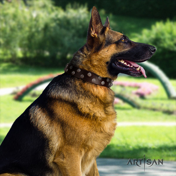 German Shepherd adjustable full grain genuine leather collar with embellishments for your canine