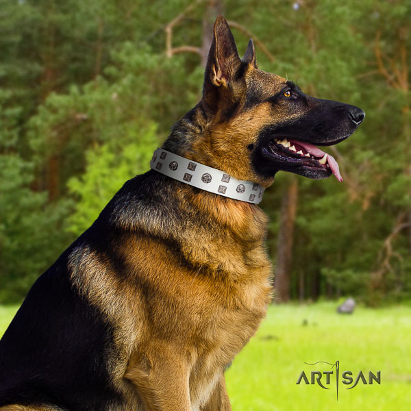 German-Shepherd stunning full grain leather collar with studs for your canine