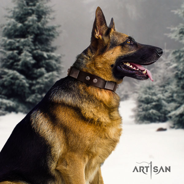 German Shepherd amazing natural genuine leather collar with studs for your dog