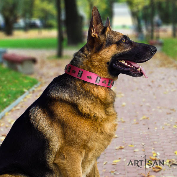 German-Shepherd stylish full grain natural leather collar with studs for your canine