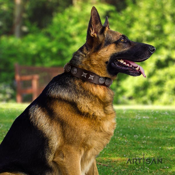 German-Shepherd easy wearing natural genuine leather collar with studs for your four-legged friend