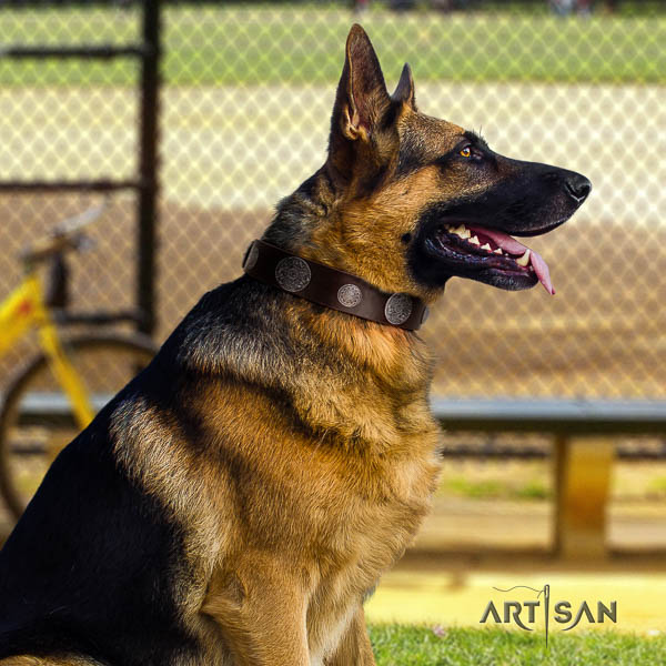 German-Shepherd top notch full grain natural leather collar with embellishments for your four-legged friend