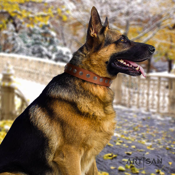 German-Shepherd fine quality leather collar with embellishments for your four-legged friend