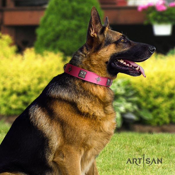 German-Shepherd extraordinary leather collar with decorations for your four-legged friend
