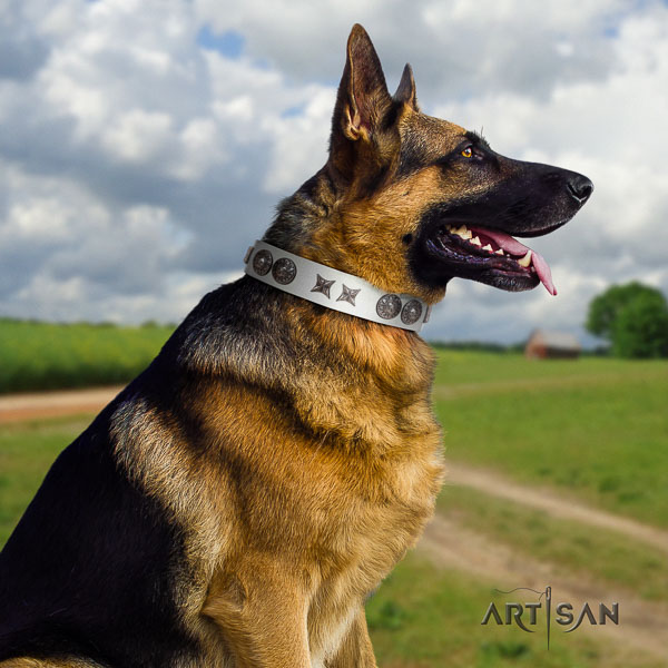 German Shepherd perfect fit full grain natural leather collar with studs for your pet