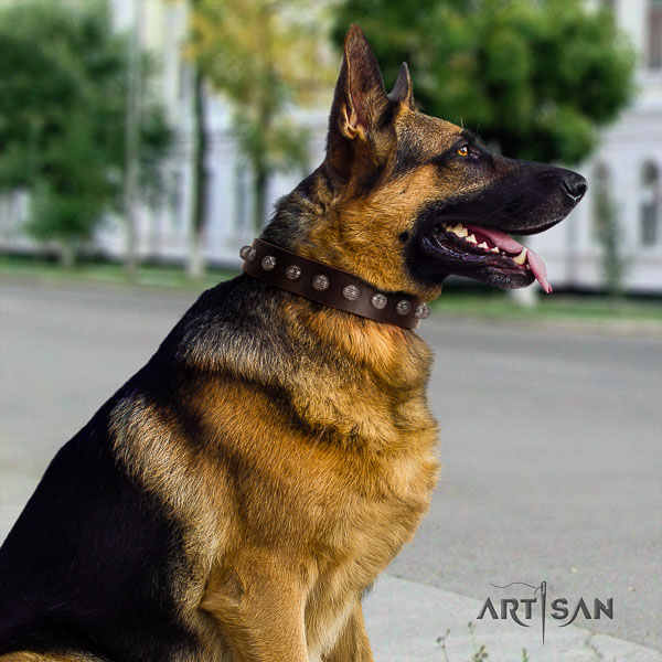 German-Shepherd convenient full grain leather collar with studs for your doggie