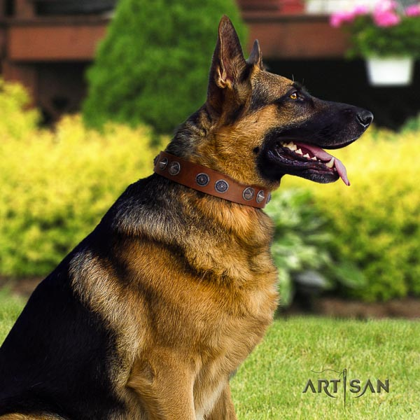 German Shepherd easy to adjust genuine leather collar with embellishments for your dog