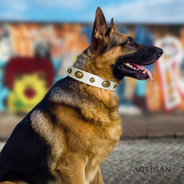 German-Shepherd fine quality collar with exceptional studs for your four-legged friend