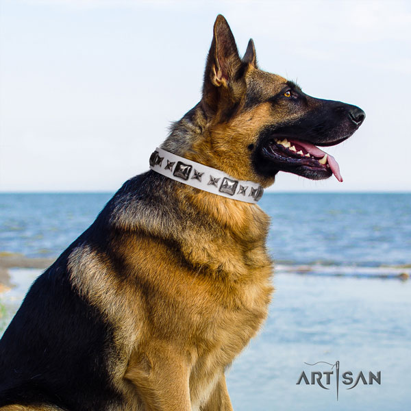 German Shepherd perfect fit collar with significant embellishments for your dog