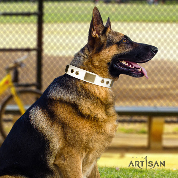 German Shepherd handcrafted collar with extraordinary studs for your pet