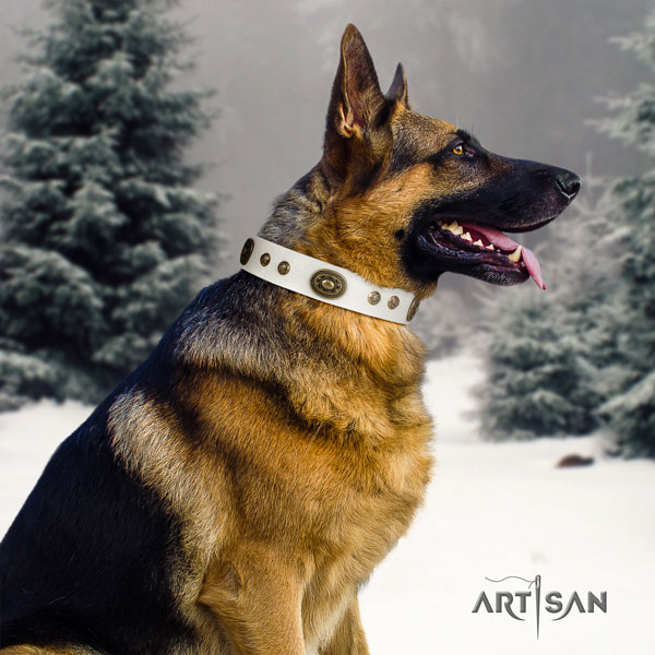 German Shepherd easy wearing collar with incredible embellishments for your four-legged friend