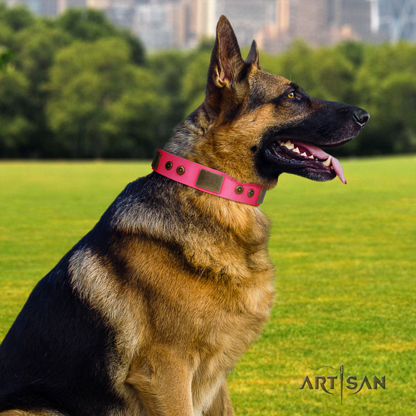 German Shepherd best quality collar with remarkable embellishments for your canine