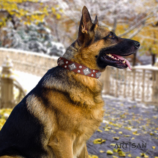 German-Shepherd top quality collar with top notch adornments for your pet
