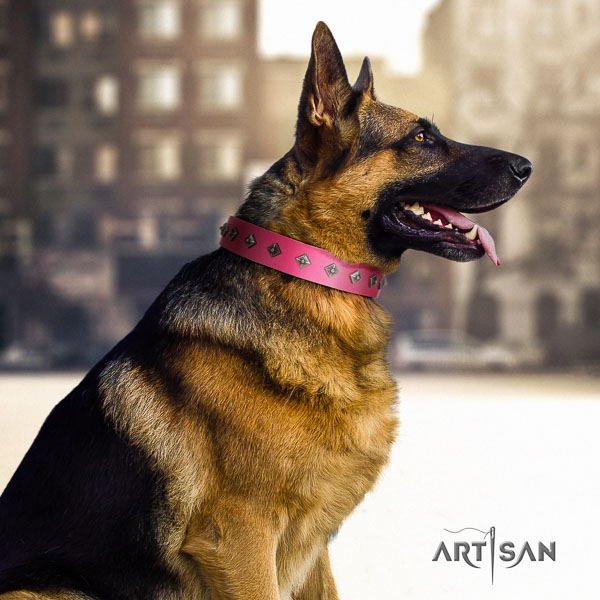 German-Shepherd significant full grain natural leather collar with adornments for your doggie