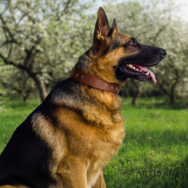 German-Shepherd stylish design natural genuine leather collar with embellishments for your four-legged friend